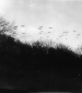 Squadron of planes flying